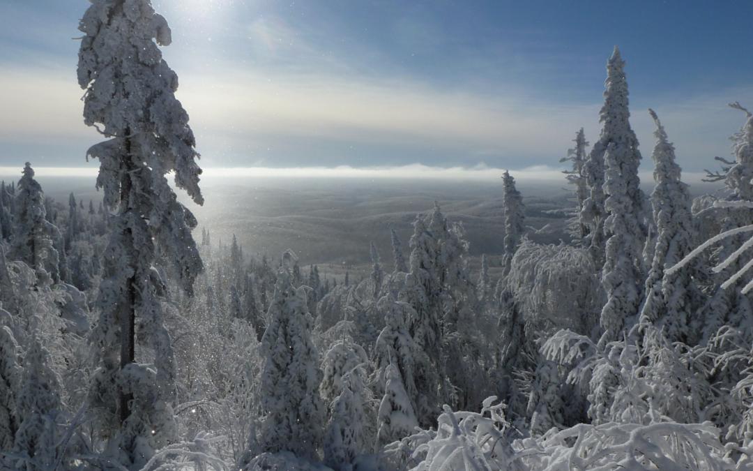 Tomber en amour avec l'hiver : interview avec Manon René de Cotret