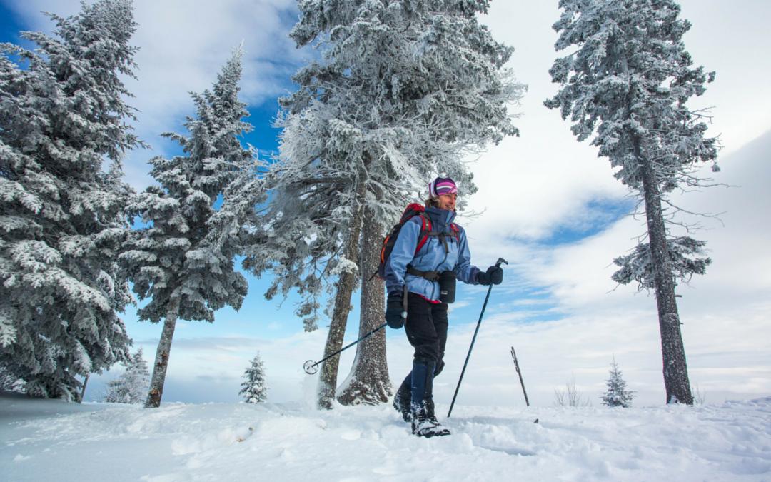 Ski de fond : 1 discipline, 3 variantes