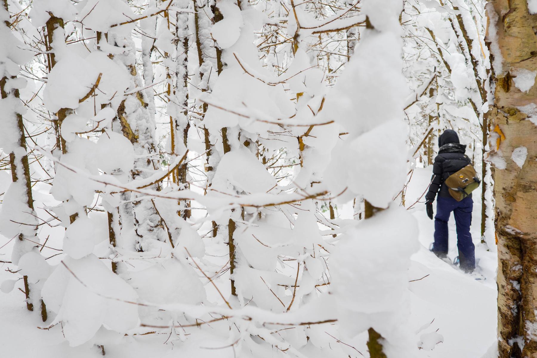 parc-montagne-du-diable-activités-hiver-raquettes-04