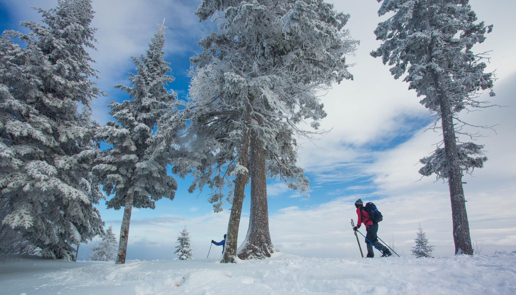 parc-montagne-du-diable-activités-hiver-ski-09