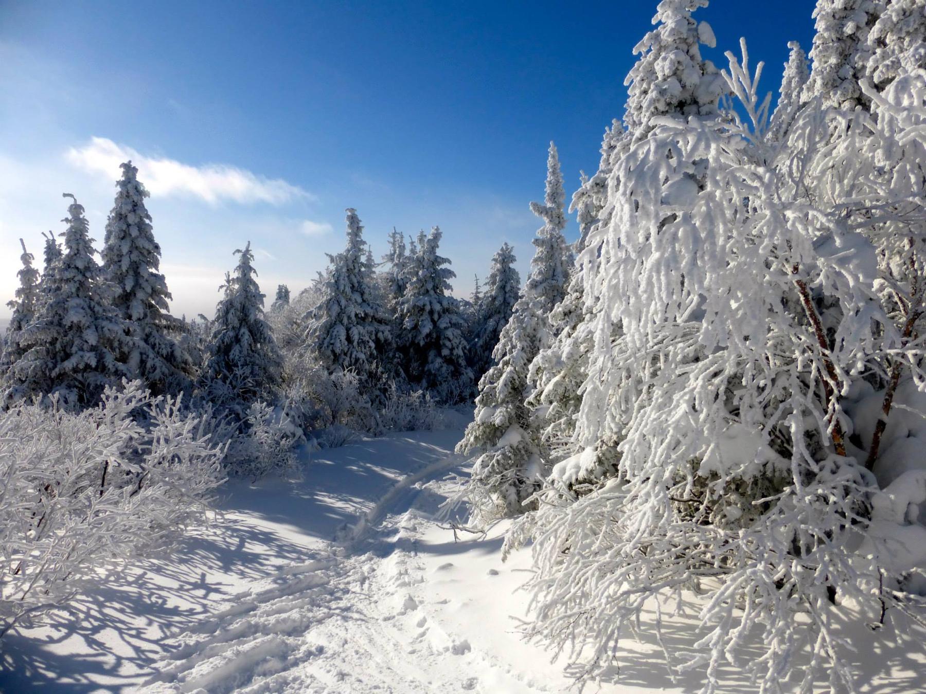 parc-montagne-du-diable-paysage-00016_1800x1350