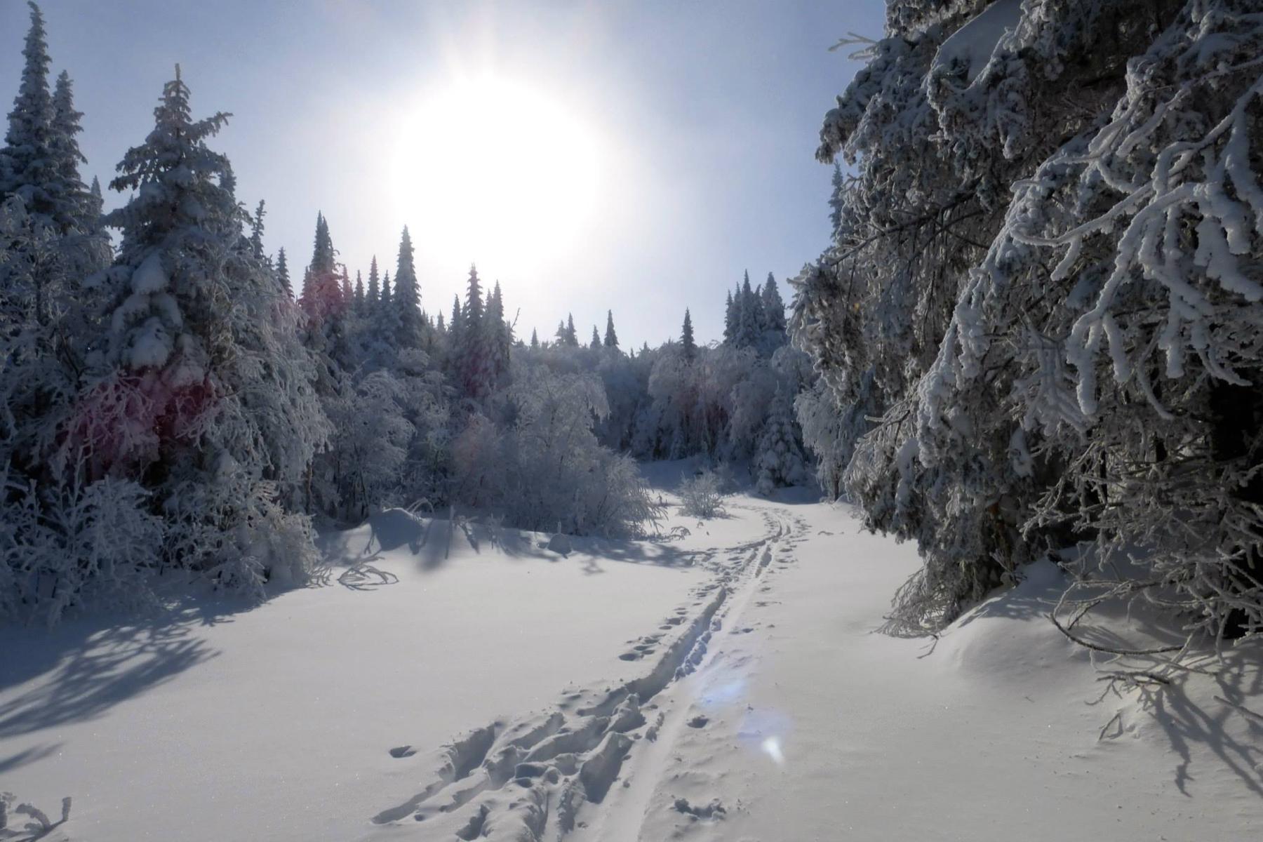 parc-montagne-du-diable-paysage-00024_1800x1200
