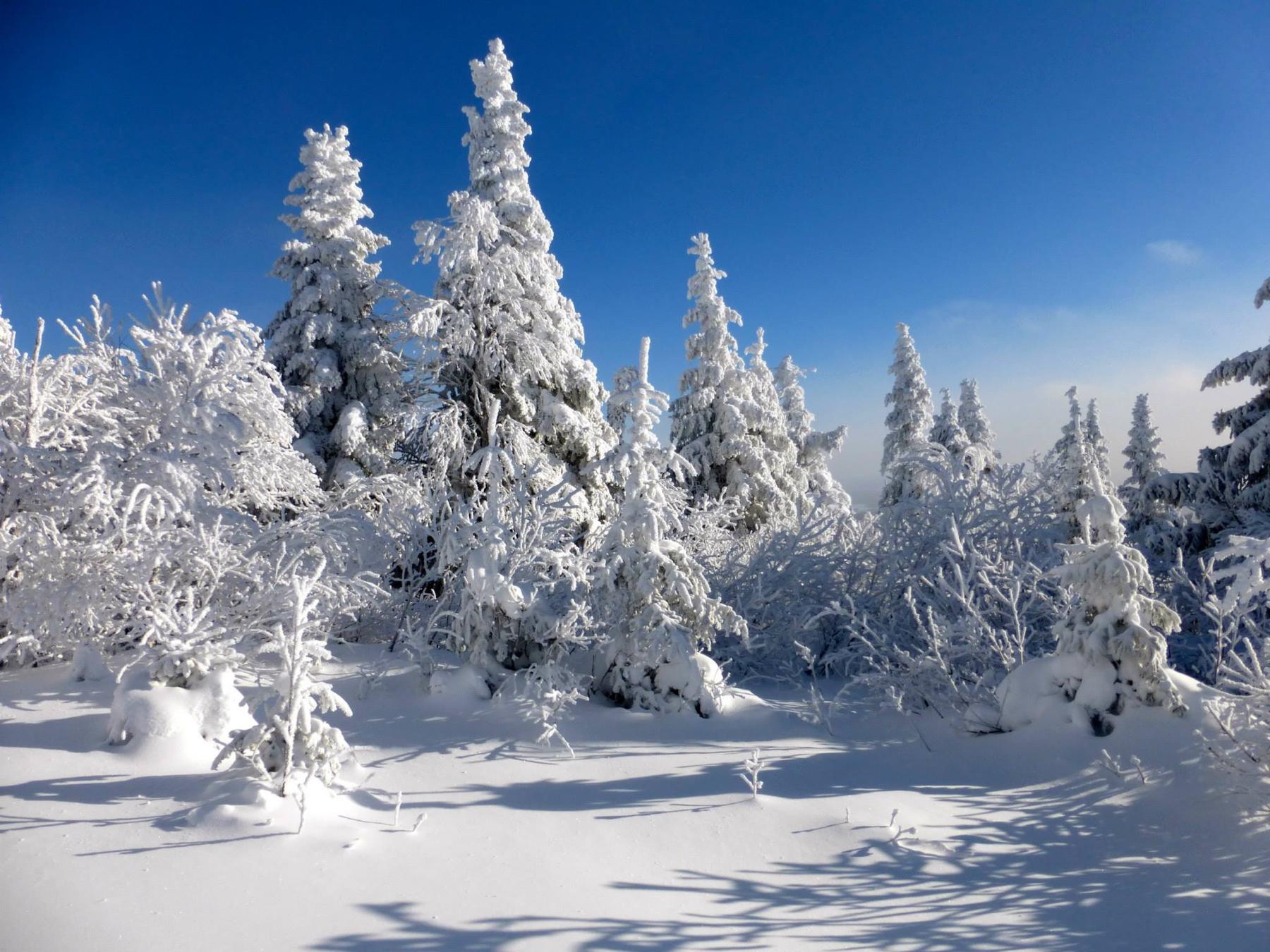 parc-montagne-du-diable-paysage-00029_1800x1350