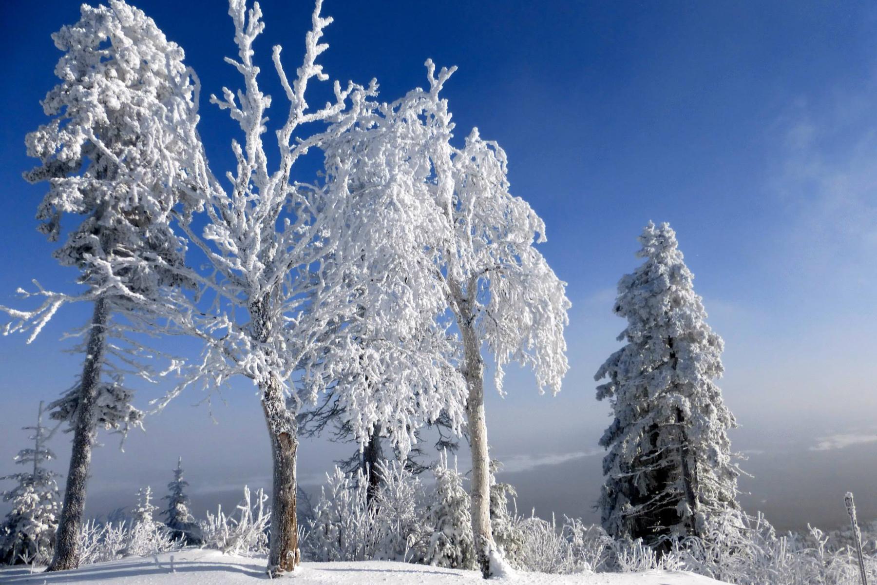 parc-montagne-du-diable-paysage-00030_1800x1200