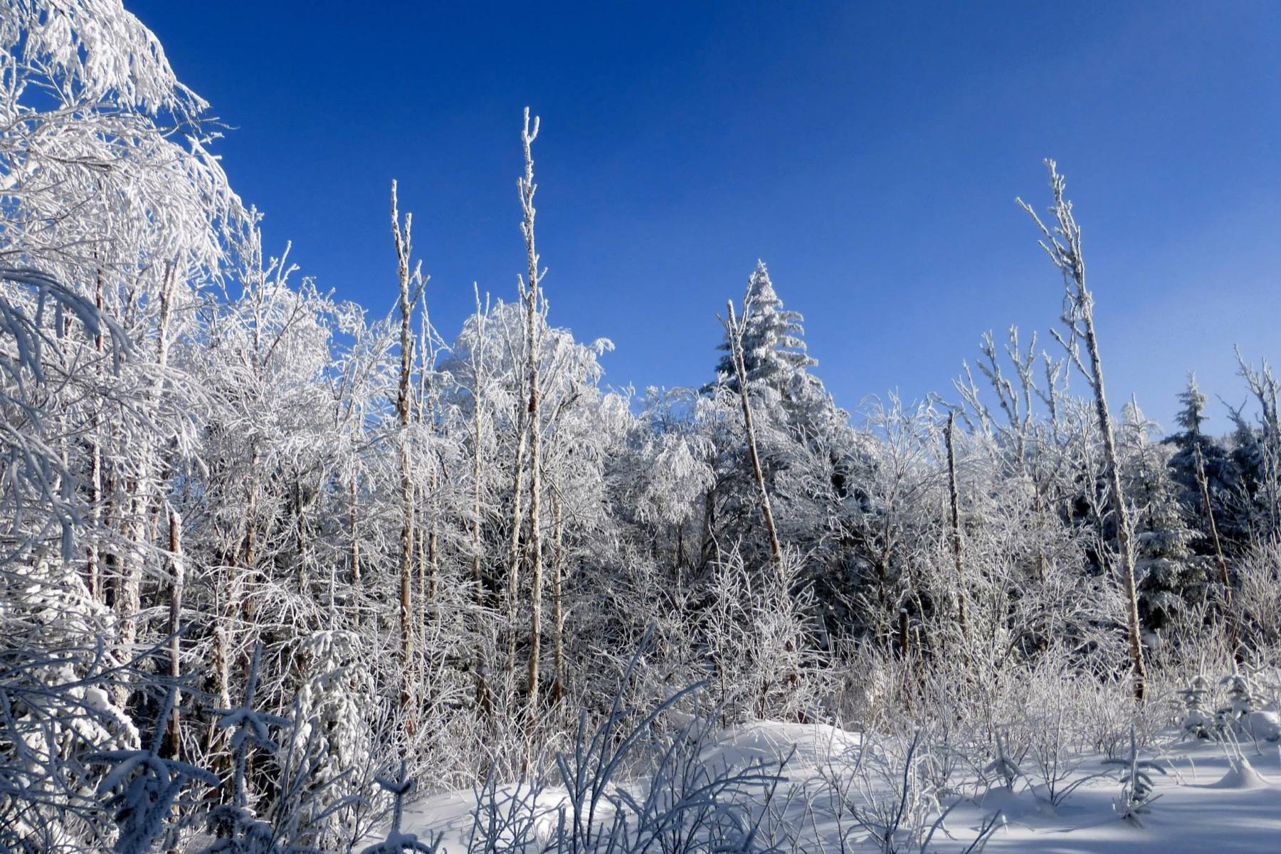 parc-montagne-du-diable-paysage-00031_1800x1200