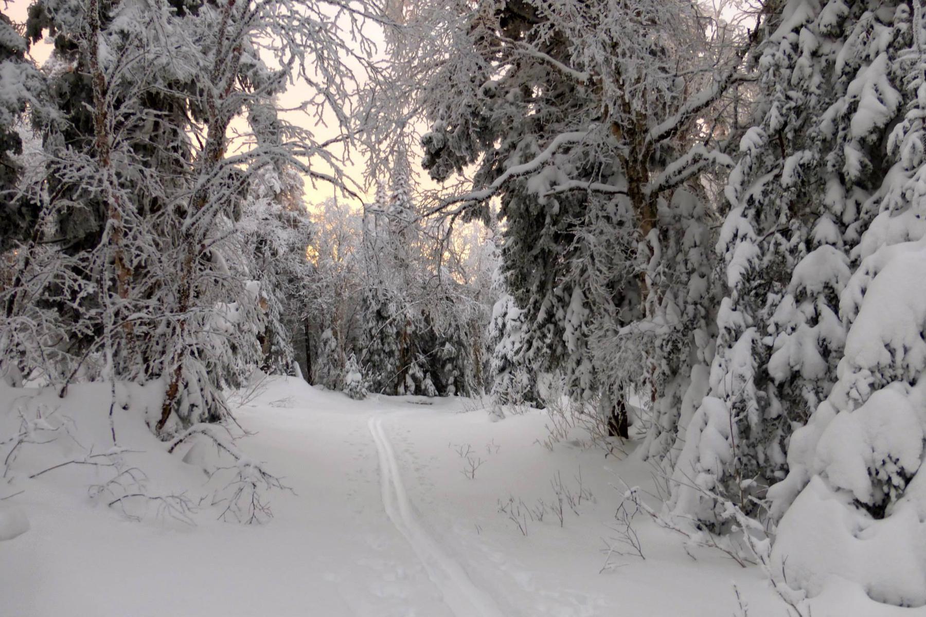 parc-montagne-du-diable-paysage-00034_1800x1200