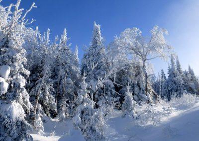 parc-montagne-du-diable-paysage-00036_1800x1200
