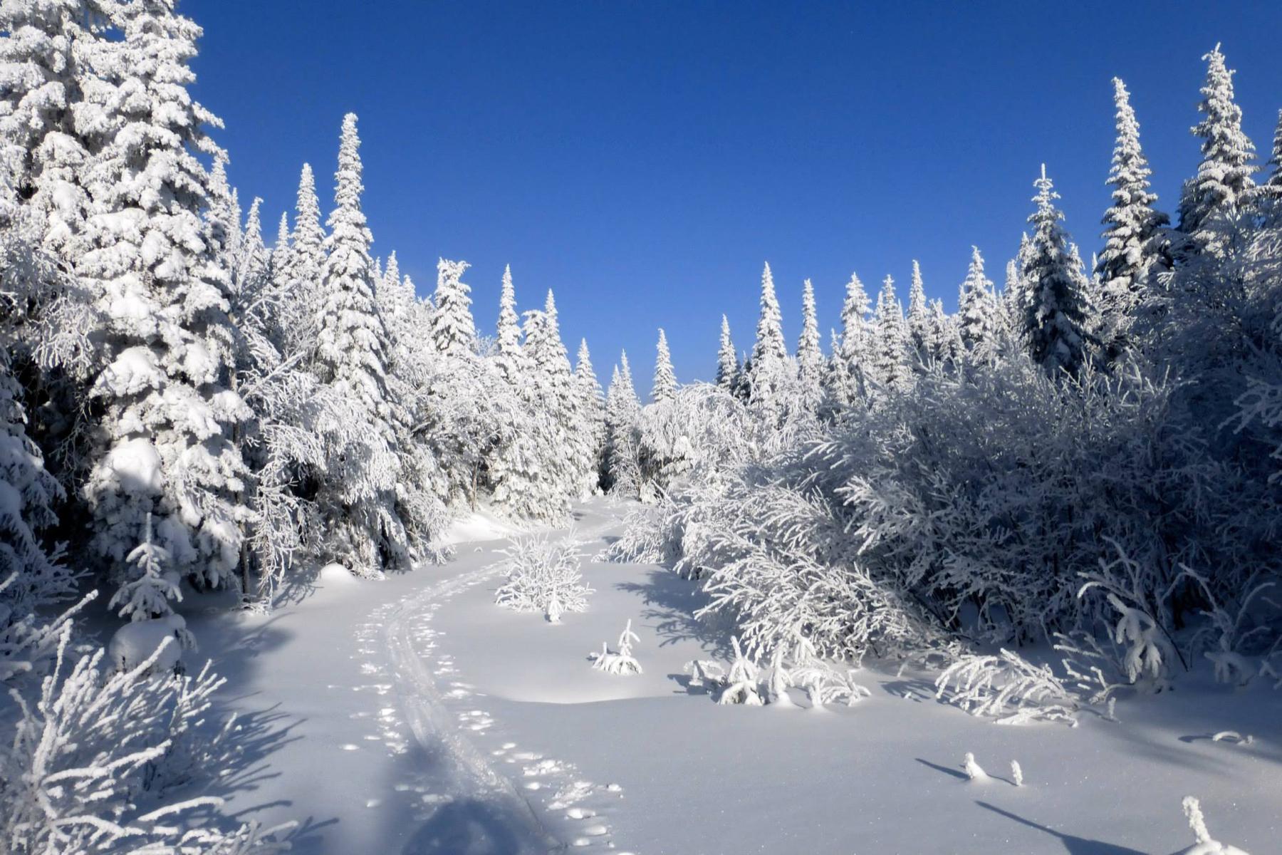 parc-montagne-du-diable-paysage-00038_1800x1200