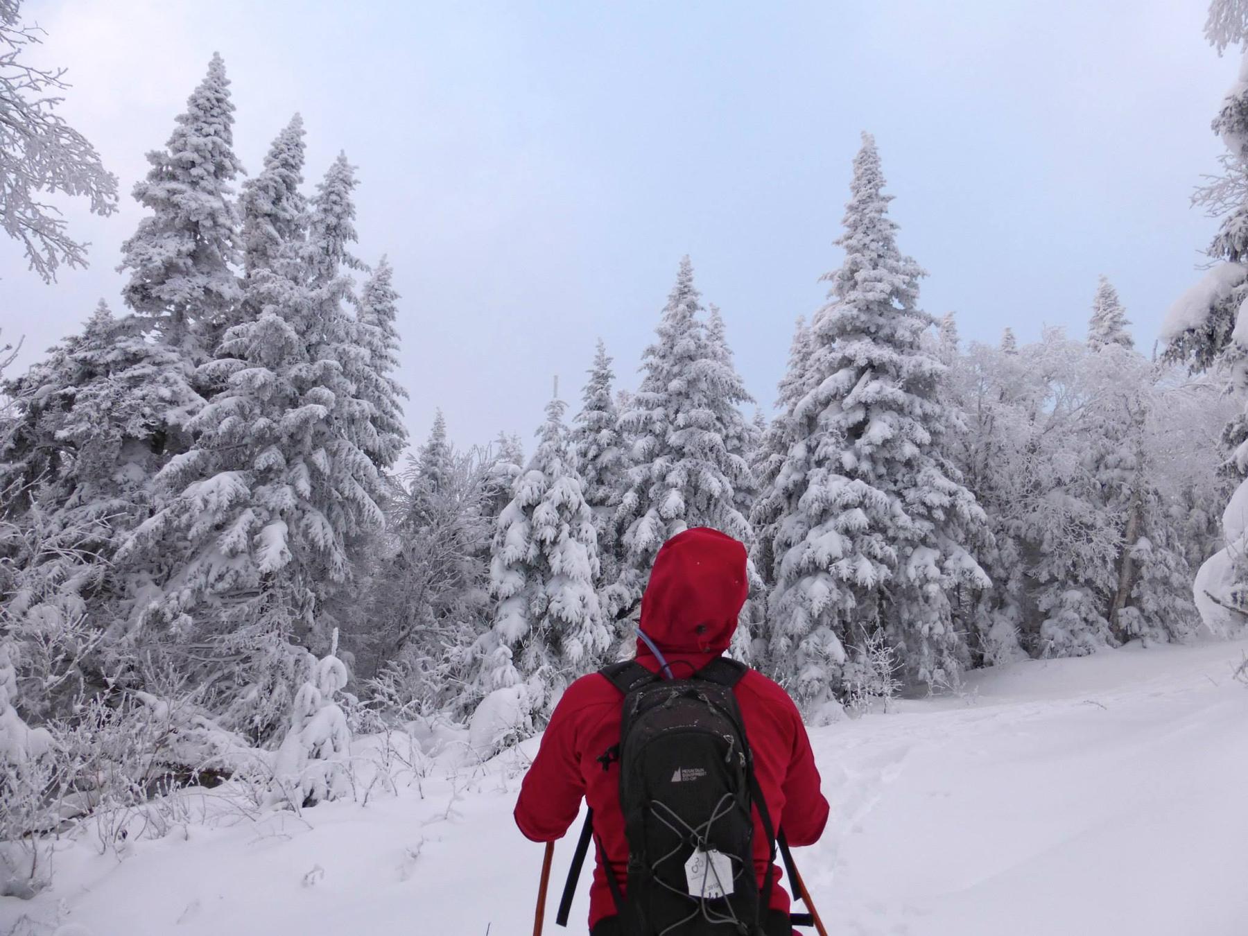 parc-montagne-du-diable-paysage-00039_1800x1350