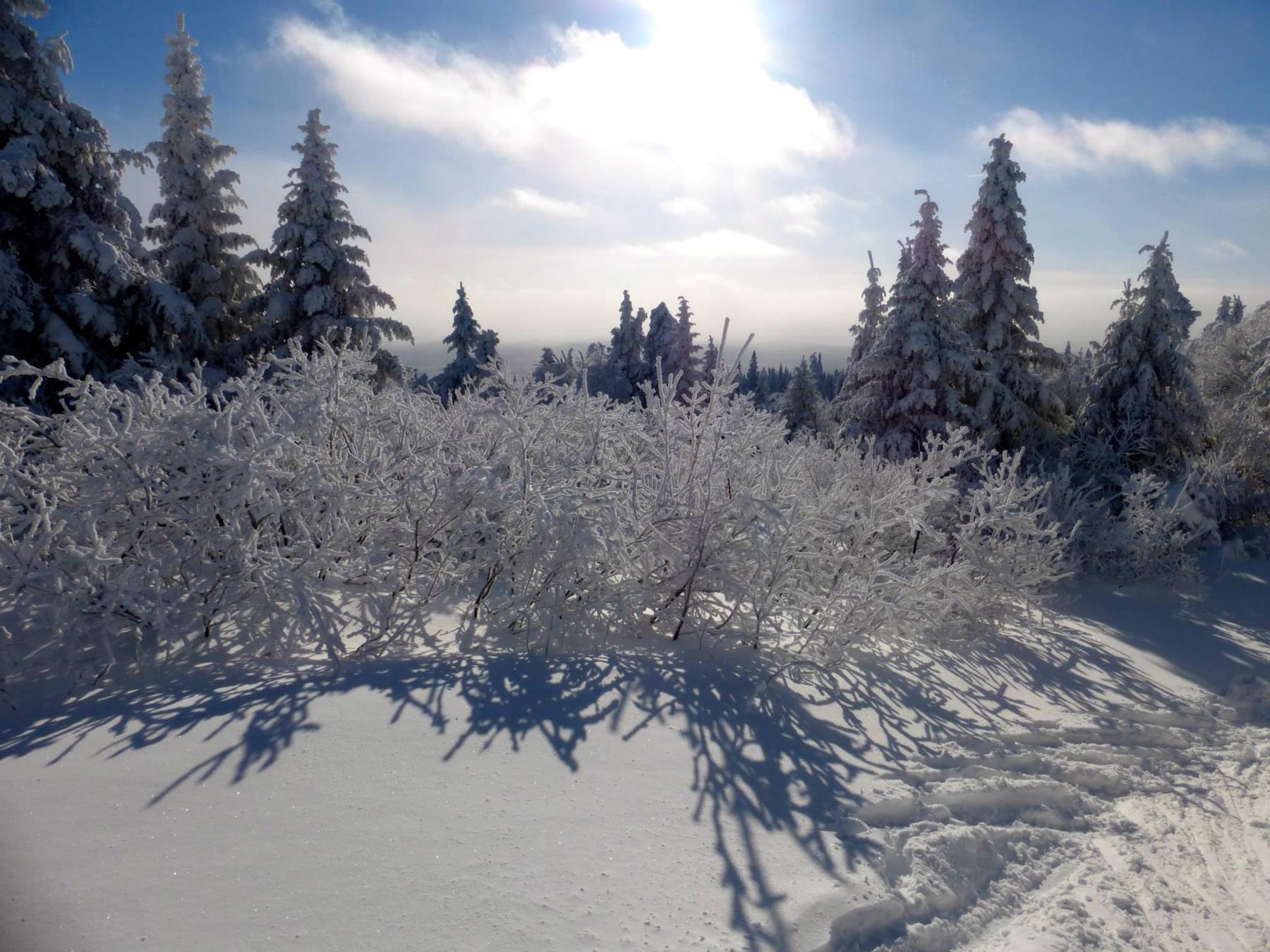 parc-montagne-du-diable-paysage-00042_1800x1350