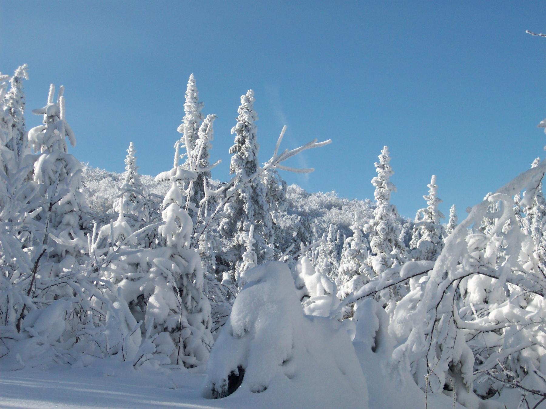 parc-montagne-du-diable-paysage-00052_1800x1350