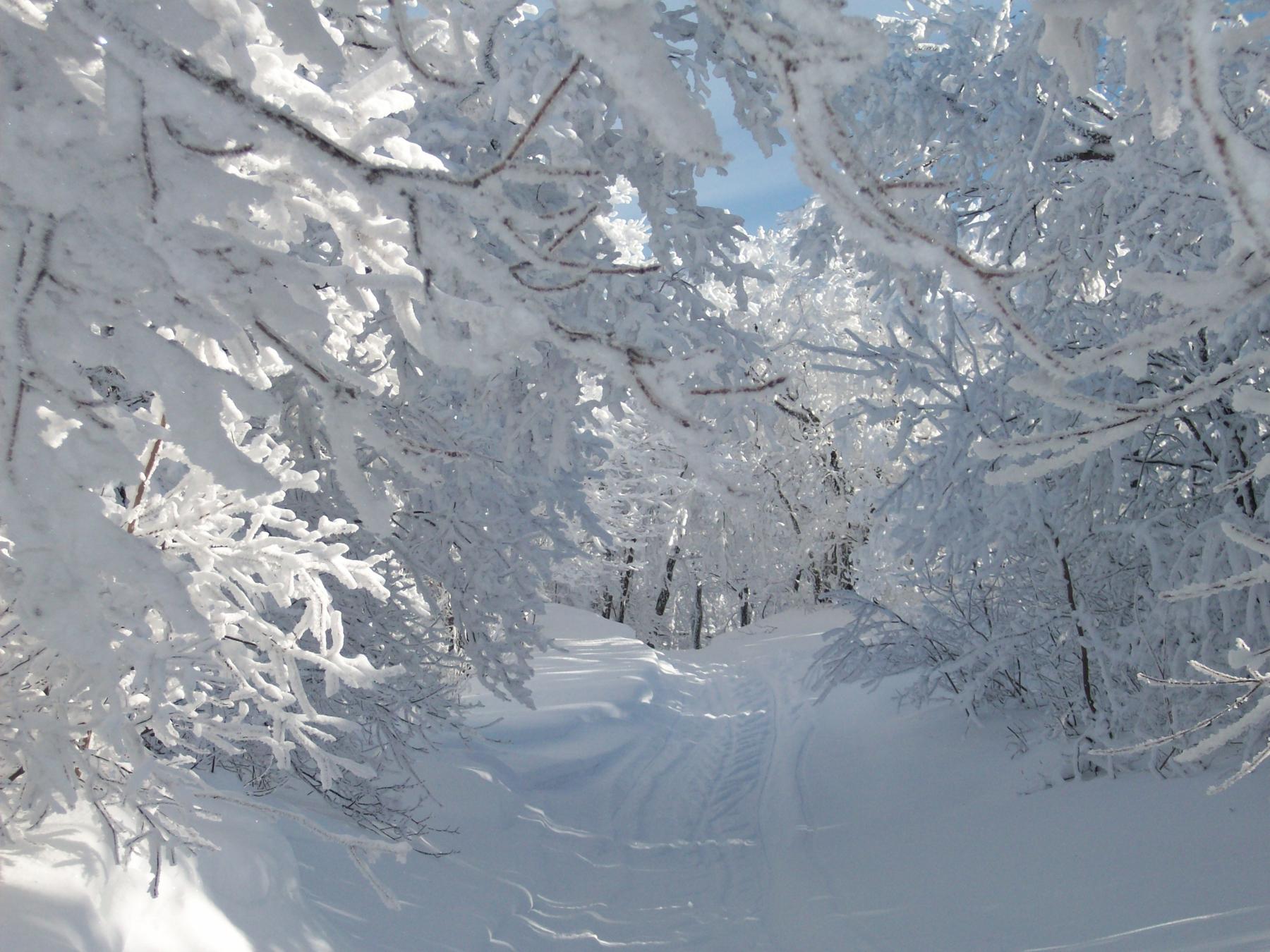 parc-montagne-du-diable-paysage-00056_1800x1350