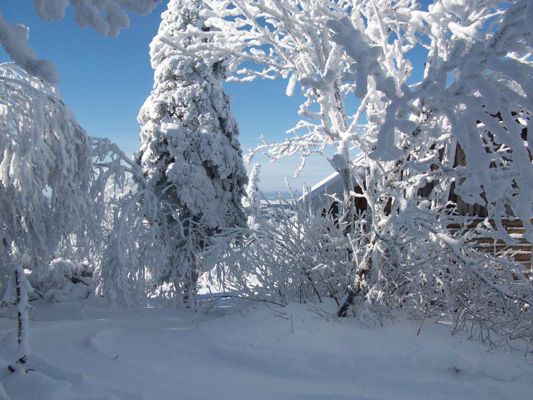 parc-montagne-du-diable-paysage-00059_1800x1350