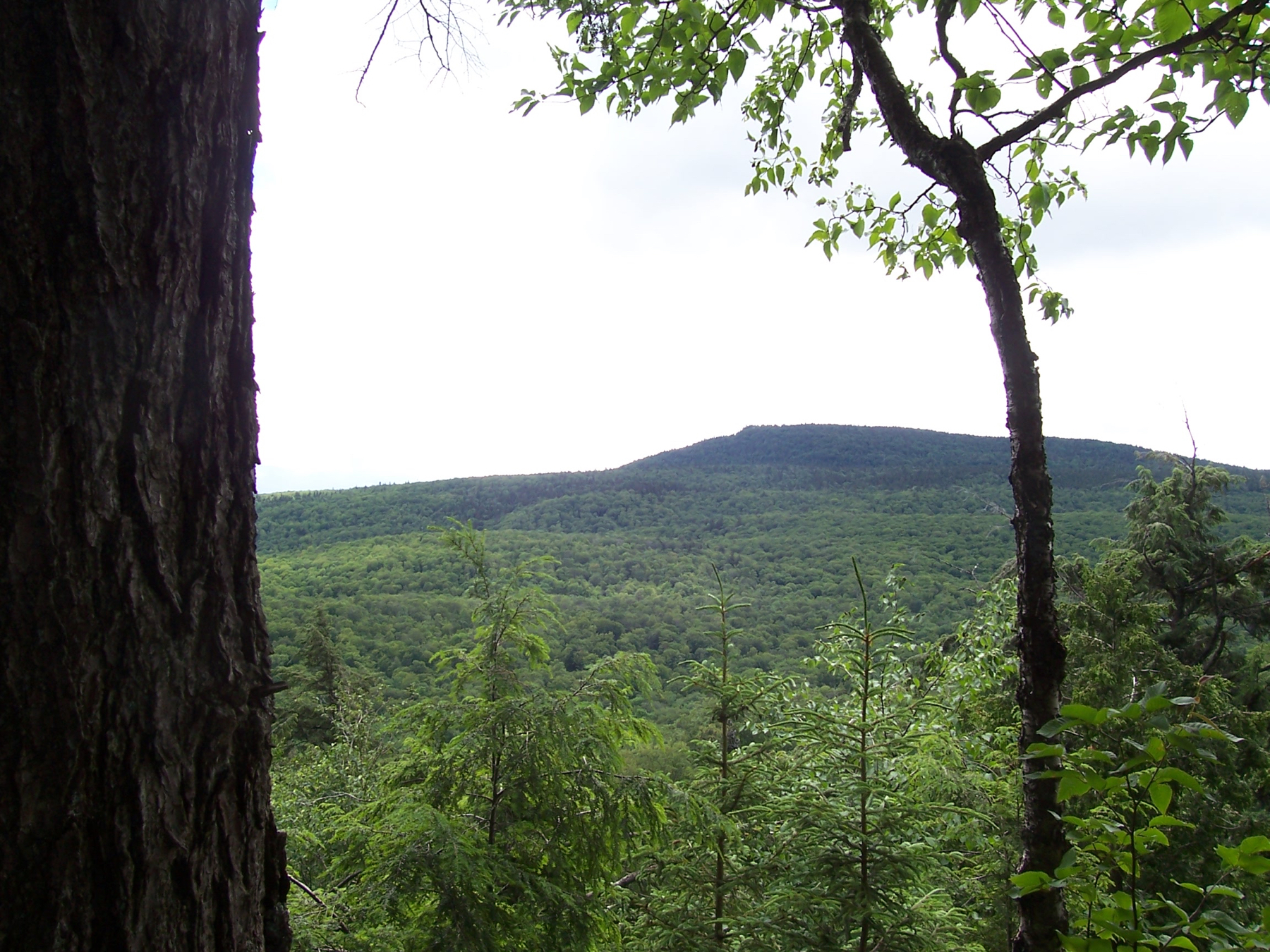 parc-montagne-du-diable-paysage-00067_1800x1350