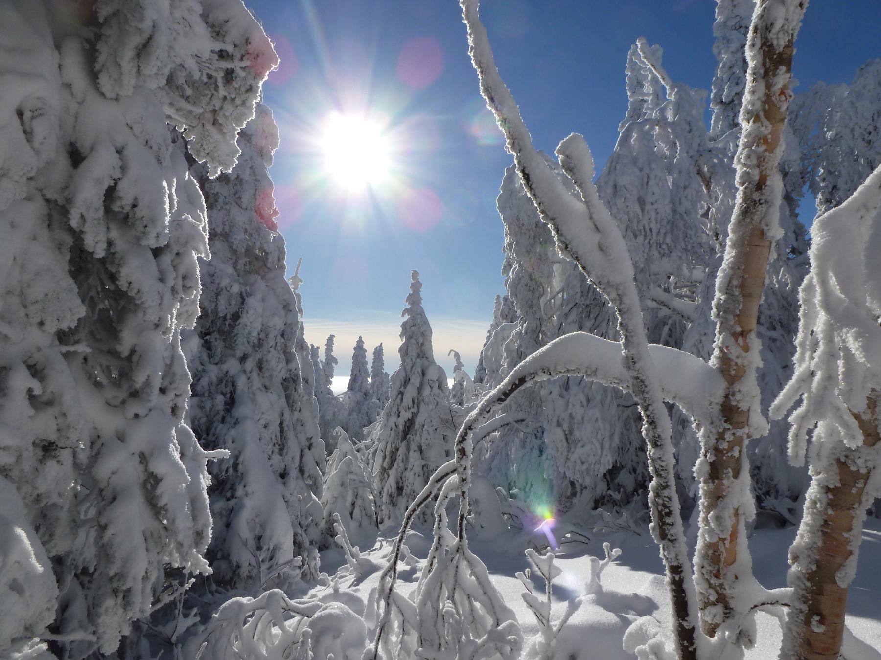 parc-montagne-du-diable-paysage-00170_1800x1350