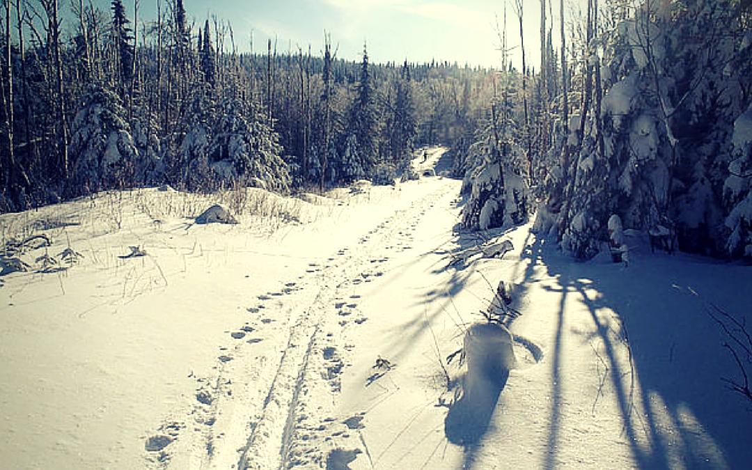 La « balade de ski de fond » de Réjean du 18 novembre 2014